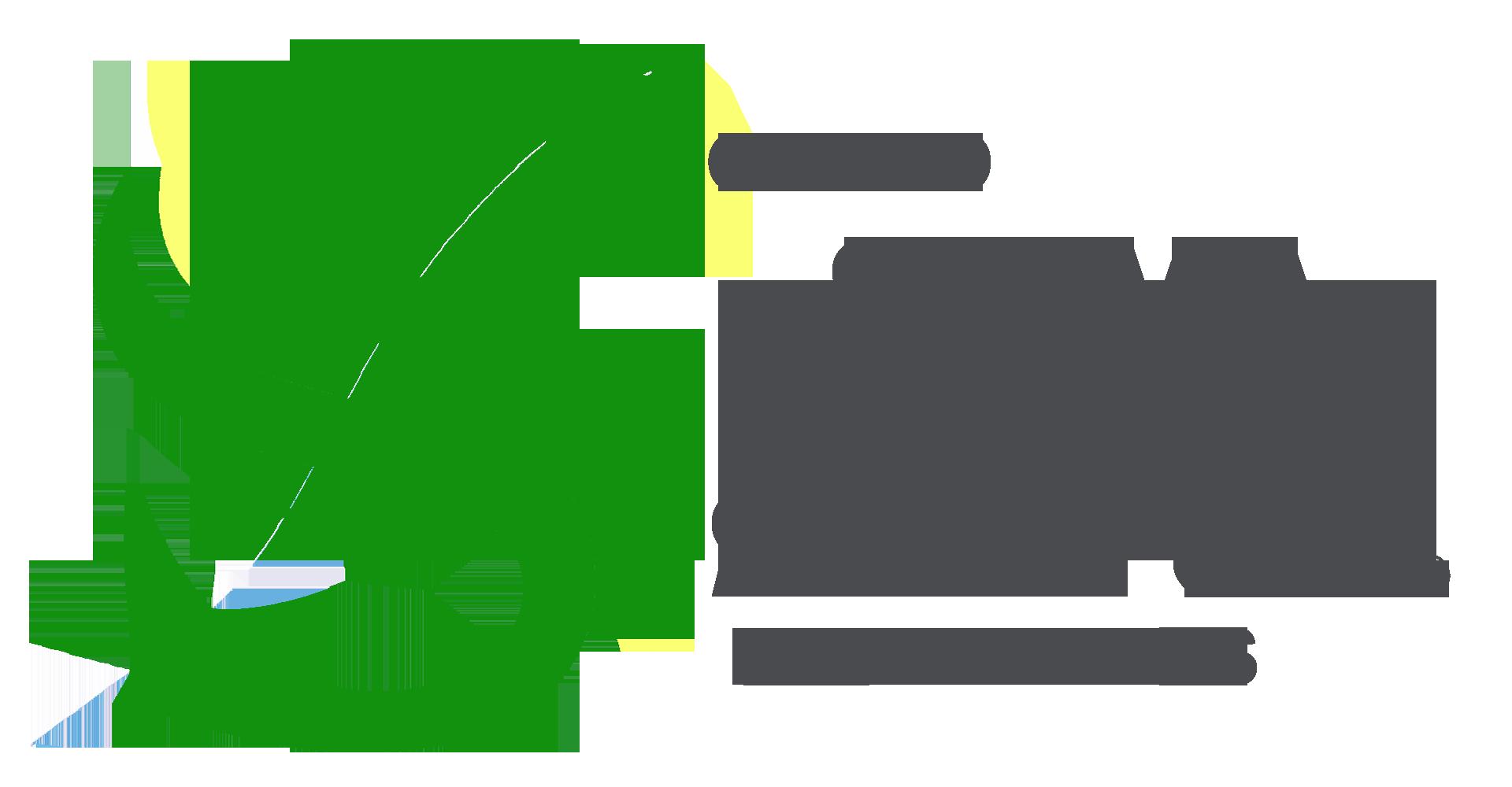 Grupo Silva e Santos
